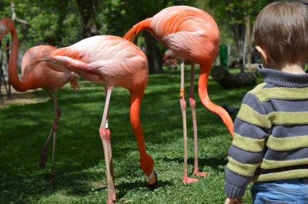 Foto 1. Zoo Aquarium