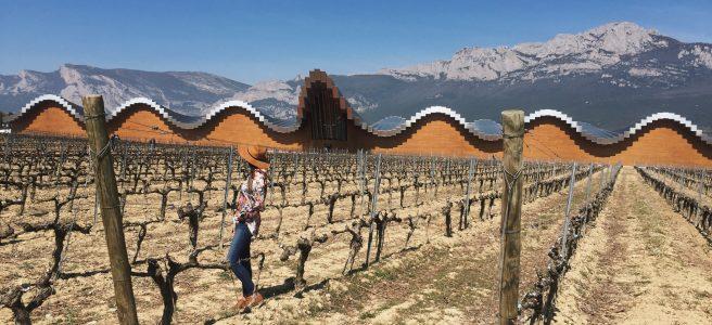 Ysios La Rioja vinho bodega
