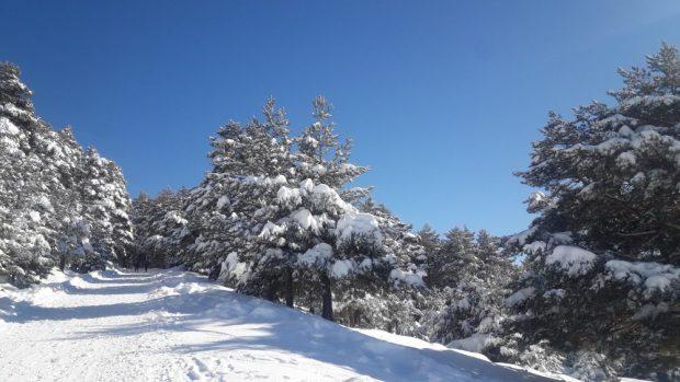 trilha montanha Cotos